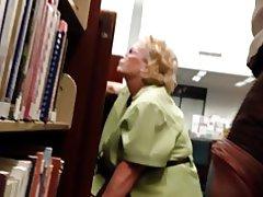 Biblioteca flash Dick